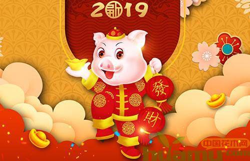 中国花木网2019春节放假公告图片
