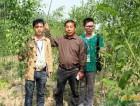 免费送彩金专访鄢陵顺达家庭农场——苗木发展新模式