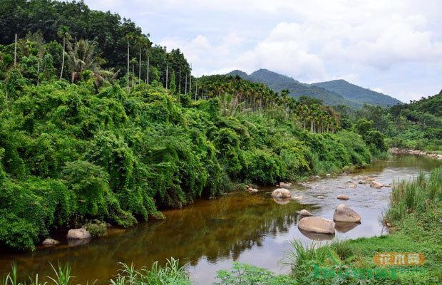 江西省计划3年内创建30个省级示范国有林场