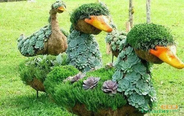 那些精妙的园艺造型怎么来的?没想到技术竟发展到如此图片