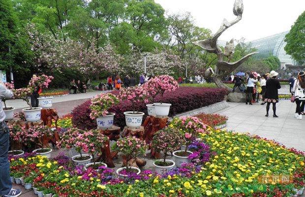 南山植物园与南半球规模最大植物园合作