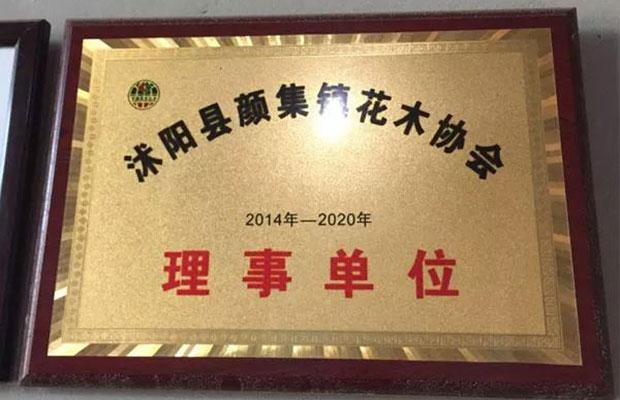 沭阳县颜集镇花木协会理事单位证书.jpg