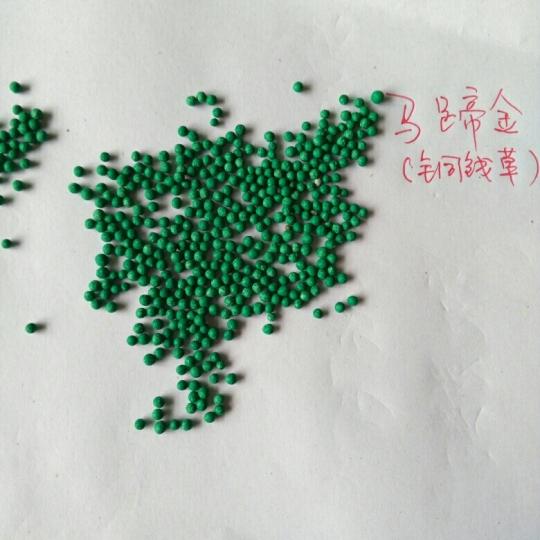 马蹄金种子