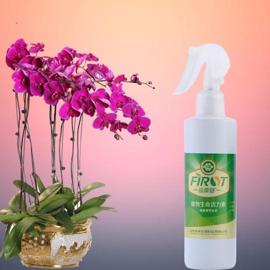 植物生命活力素250g