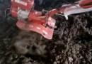 有机肥料  营养土