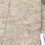 马尼拉草卷
