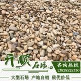 鹅卵石 脚底按摩石 鱼池石 铺路石