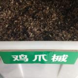 鸡爪槭种子,鸡爪槭种子价格
