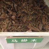 马褂木种子,马褂木种子价格