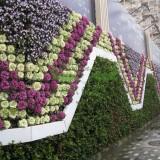 盆式花墙板 植物墙生产厂家