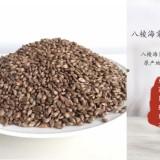 八棱海棠种子2021年沙藏海棠种子