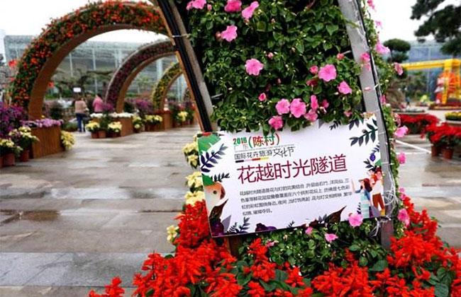 广东陈村花卉旅游文化节 8万名游客参观打卡