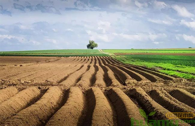 关于农村土地承包补贴,2019年的新政策来了!