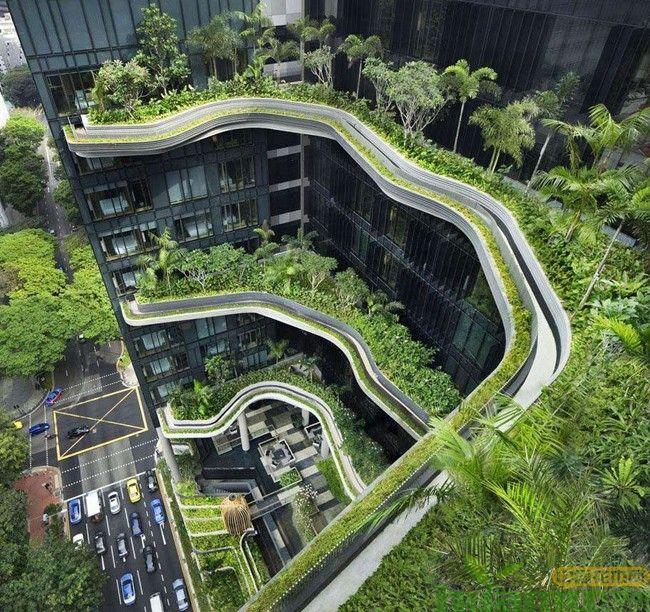立体绿化成未来城市发展趋势