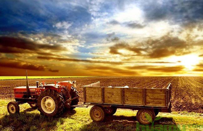 2019年农资行业有哪些发展趋势?