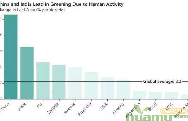 地球比20年前更绿了