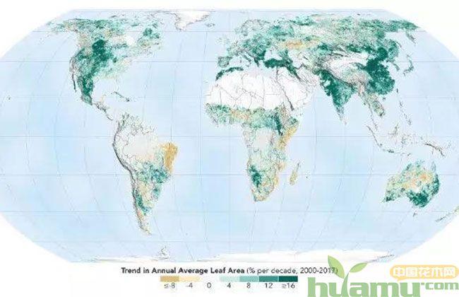 地球比20年前更绿,地球绿化图片