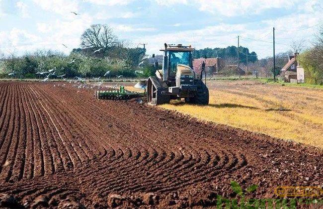 怎么判断土壤好不好?园林栽植土壤有哪些要求?