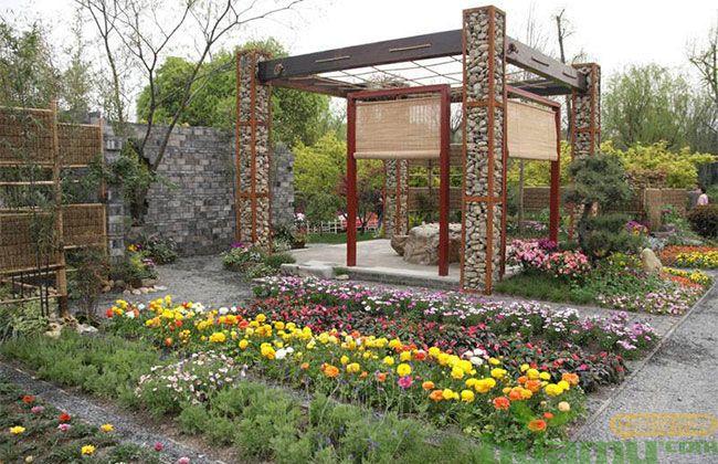 合肥植物园2019春季花展开幕