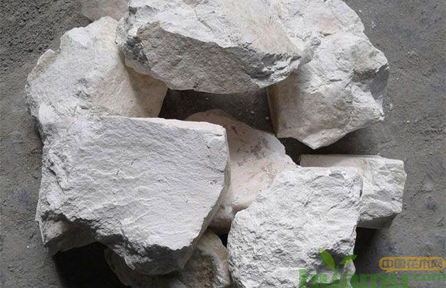 苗木种植为什么离不开石硫合剂?