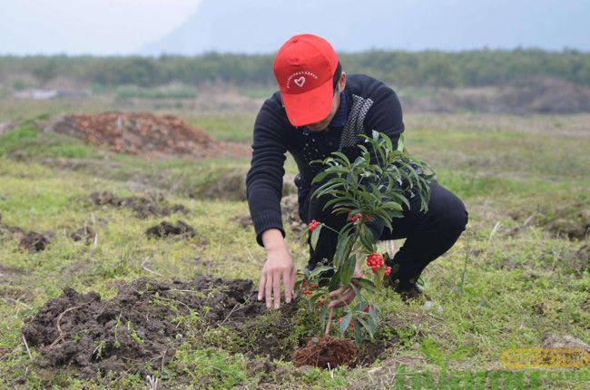 做好这几点可以提高春季植树成活率