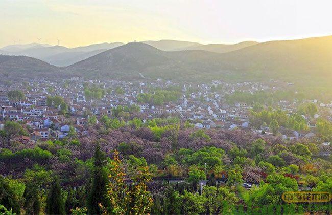 """安徽:2018年造林143万余亩促林业""""增绿"""""""