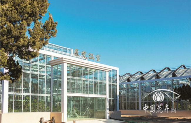 展览温室大棚