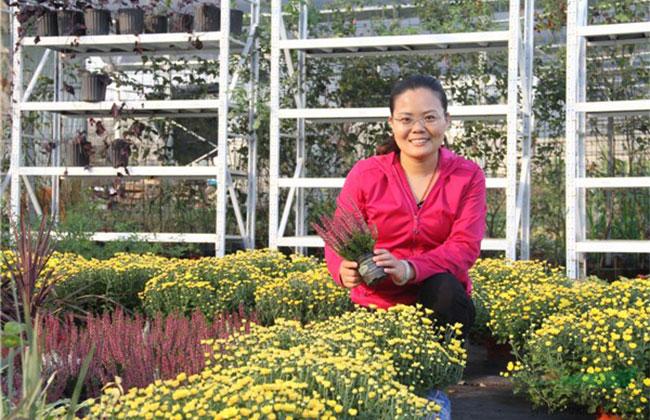 陶美玉的花园致富经验分享