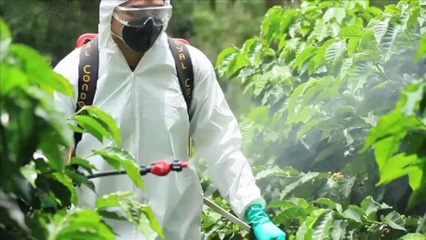 春季园林养护,农药不可乱用,快来看看这些禁忌!