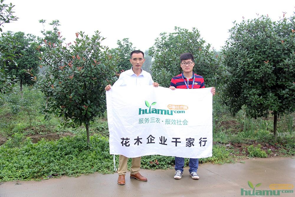 绿华园林有限公司总经理陈青辉与中国花木网记者合影