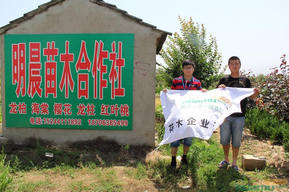 李梅超与中国花木网记者合影