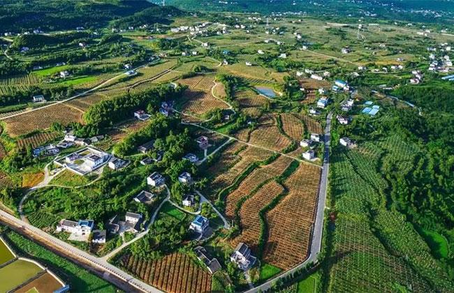 4月底开始,农民自愿永久退出土地,一亩补偿4万