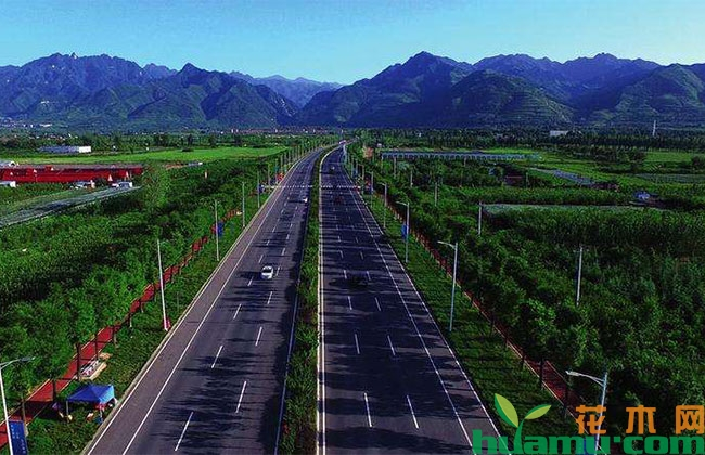 """上海""""春景秋色""""生态景观即将建成"""