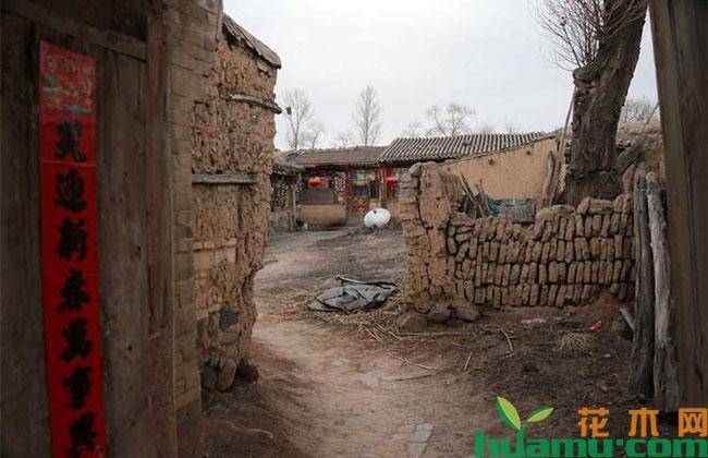 农村宅基地可以继承吗?哪几类人不能继承?