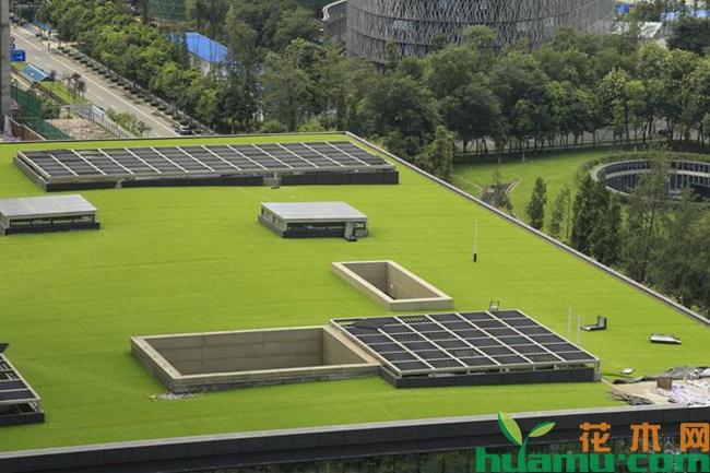 佛甲草屋顶绿化隔热吗?佛甲草屋顶绿化价格多少钱?
