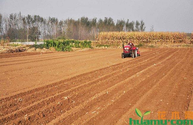 农村人在城里落户,家里的耕地宅基地还有吗?