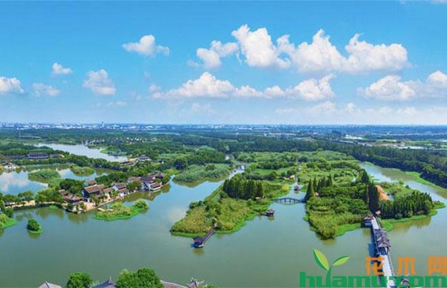 江阴沿江生态绿廊明年建成 实现宜林地植树造林