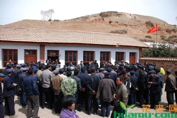 2019年农村村干部选举要求