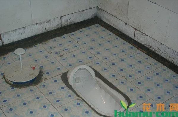 2019年农村厕所改造补贴标准
