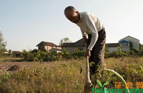农业户口取消以后农民的土地会不会被国家收回?