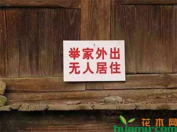 农村闲置的宅基地将被收回