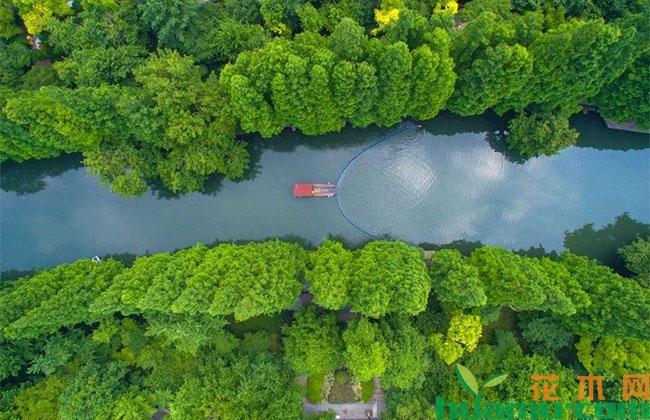 大兴安岭:一片不可复制的自然保护地