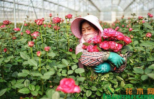 贵州走生态和发展相得益彰的新路