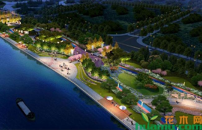 海口龙珠湾生态修复工程基本完工