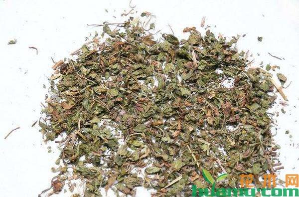 蛇莓干货多少钱一斤?