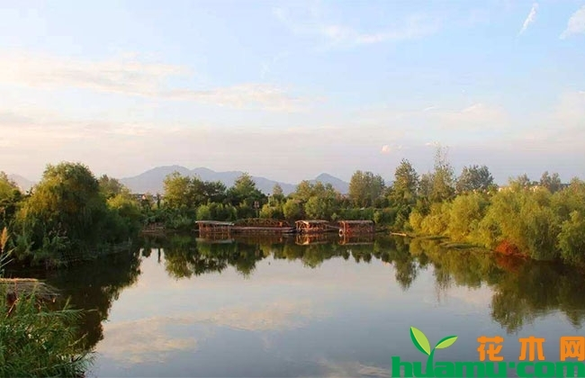 河南原阳计划投资18.67亿建设河湖生态景观项目