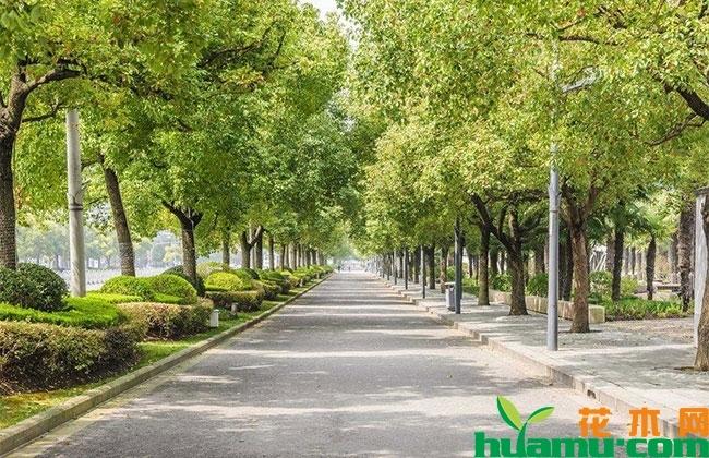 郑州大都市区空间规划出台