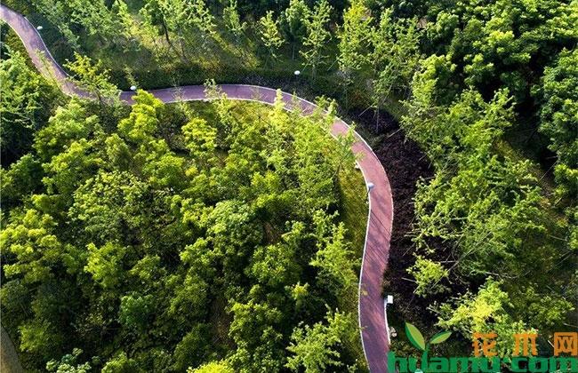 江西省首批乡村森林公园完成命名