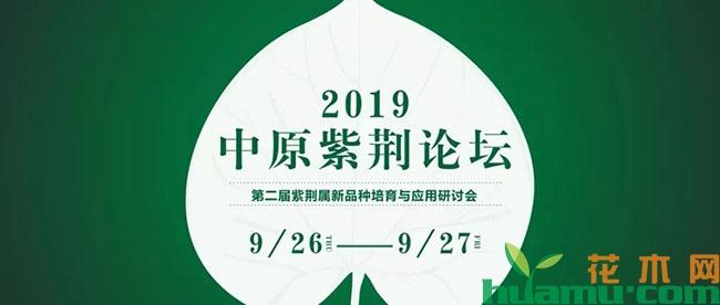 2019中原紫荆论坛,精彩值得期待!