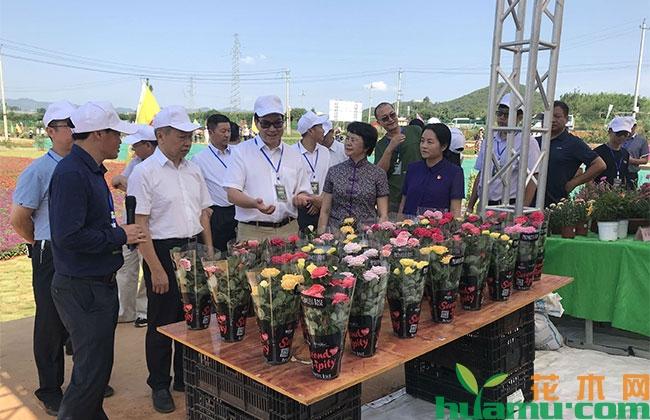 云南砚山成功举办蔬果花园艺博览会